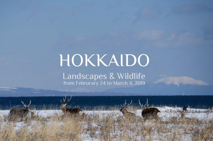 "Photo Tour Japan Winter 2019: HOKKAIDO ""Landscape & Wildlife"""