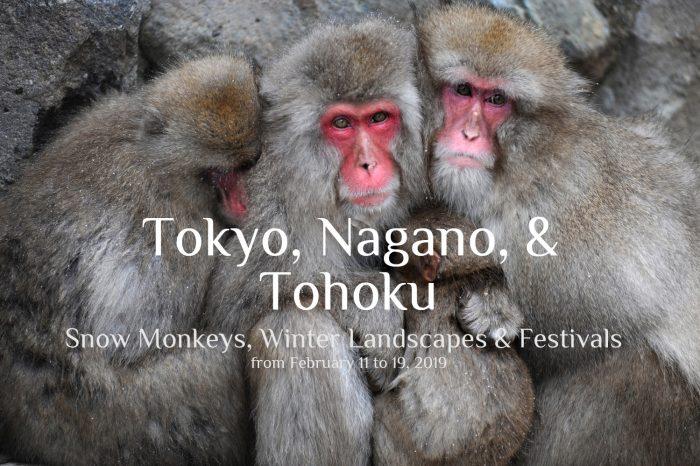 "Photo Tour Japan Winter 2019: TOKYO, NAGANO & TOHOKU ""Snow Monkeys, Winter Landscapes, and Festivals"""