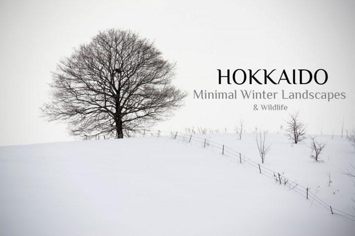 "Photo Tour Japan Winter 2021: HOKKAIDO ""Minimal Winter Landscapes & Wildlife"""