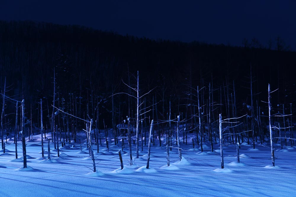 Blue Pound in Biei is illuminated in winter