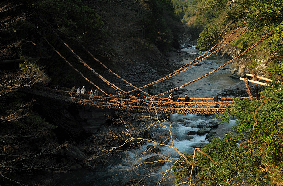 Kazura-bashi, hanging bridge in Nishi Iya, all made of branches. Iya Valley, Shikoku. Japan.
