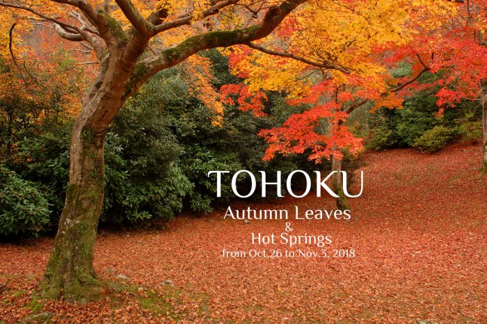 "Photo Tour to Tohoku, Japan 2018 ""Autumn Leaves & Hot Springs"""