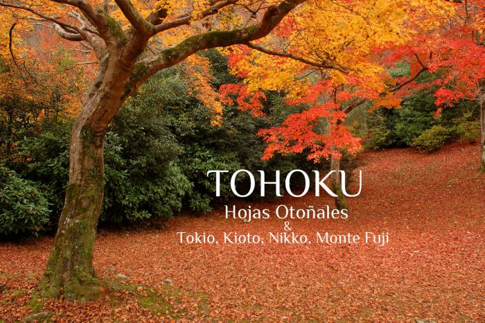 "Viaje Fotográfico a Tohoku 2020 ""Hojas Otoñales & Tokio, Kioto, Nikko, Monte Fuji"""