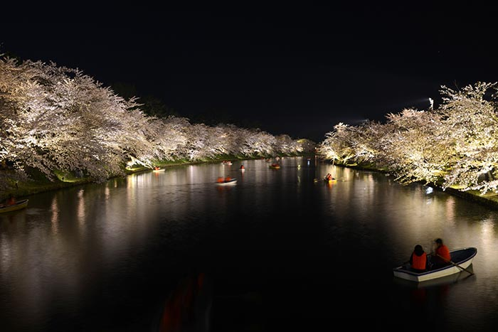 Cherry blossom photo tour to Tohoku