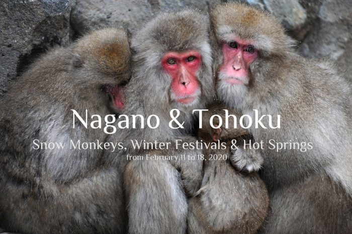 "Photo Tour Japan Winter 2020: NAGANO & TOHOKU ""Snow Monkeys, Winter Festivals, & Hot Springs"""