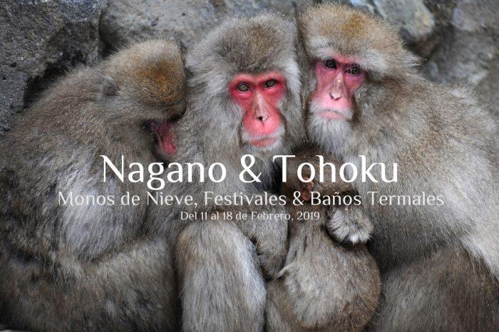 """Viaje fotográfico a Japón Invierno 2020: NAGANO & TOHOKU """"Monos de nieve & Festivales Invernales y Baños termales"""""""