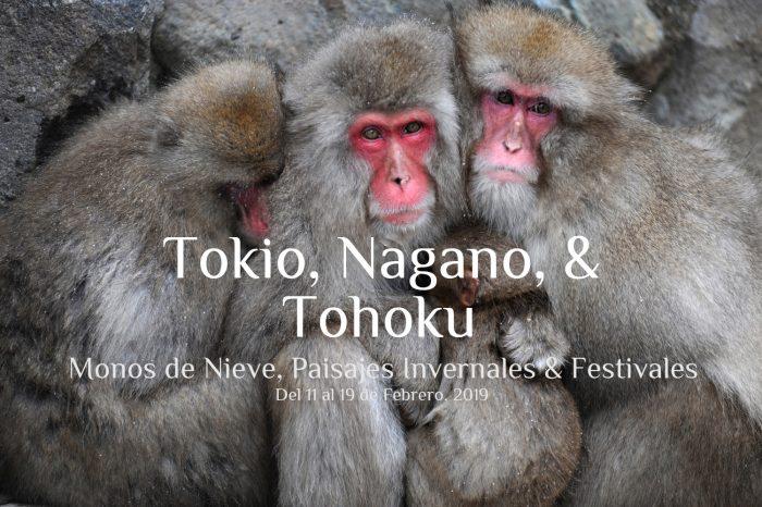 """Viaje fotográfico a Japón Invierno 2019: TOKIO, NAGANO & TOHOKU """"Monos de nieve & Paisajes Invernales y Festivales"""""""
