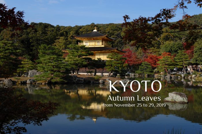 "Photo Tour to Kyoto, Japan 2019 ""Autumn Leaves"" 5 days"