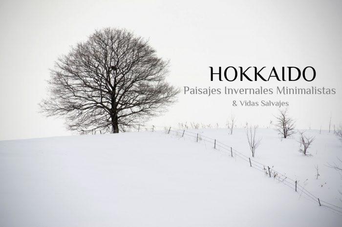 "Viaje Fotográfico a Japón Invierno 2021: HOKKAIDO ""Paisajes Minimalistas Invernales & Vidas Salvajes"""