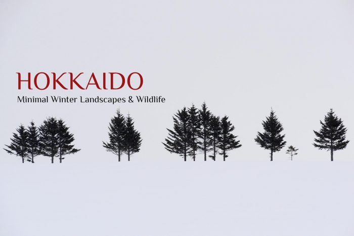 Viaje Fotográfico a Japón Invierno 2022: HOKKAIDO «Paisajes Minimalistas Invernales & Vidas Salvajes»