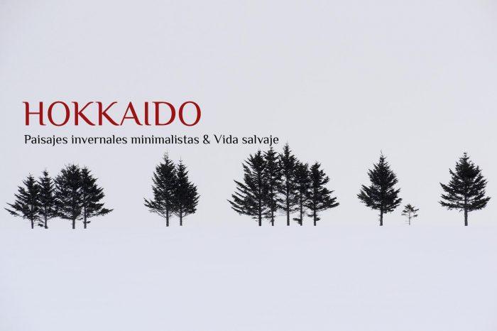 Viaje Fotográfico a Japón Invierno 2022: HOKKAIDO «Paisajes Minimalistas Invernales & Vida Salvaje»